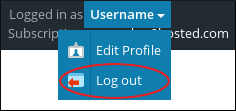 Plesk - Username - Log out